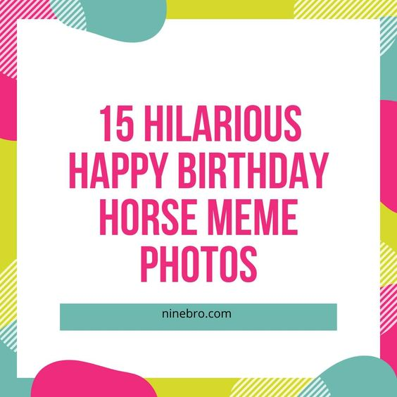 15 Hilarious Happy Birthday Horse Meme Photos