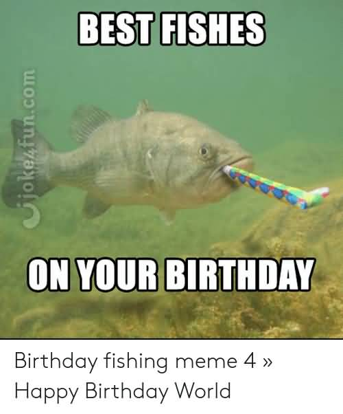 Best Fishes On Your Happy Birthday Fishing Meme