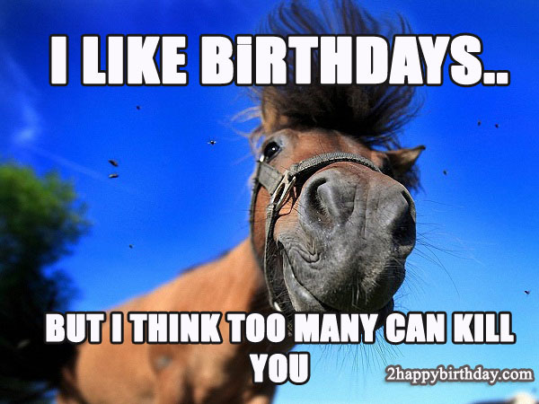 But I Think Happy Birthday Horse Meme