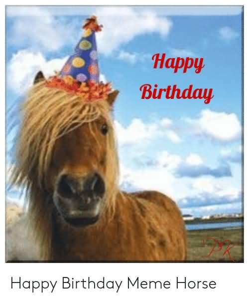 Cute Horse Birthday Happy Birthday Horse Meme