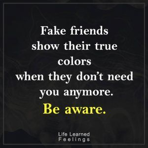 Fake Friends Show Fake Friend Quotes