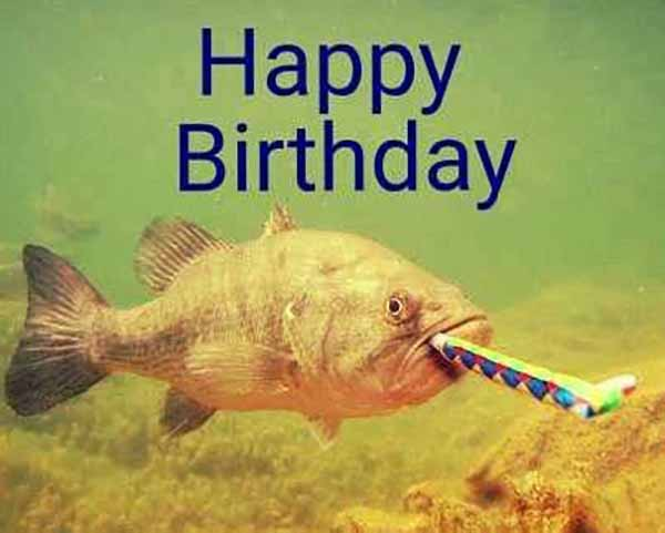 Happy Birthday Catfish Happy Birthday Fishing Meme