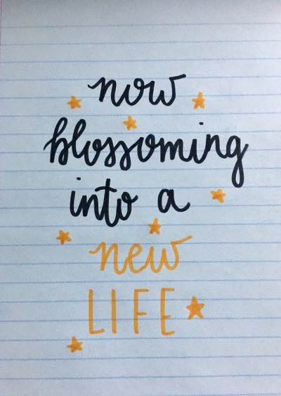 Into A New Life Broadway Quotes