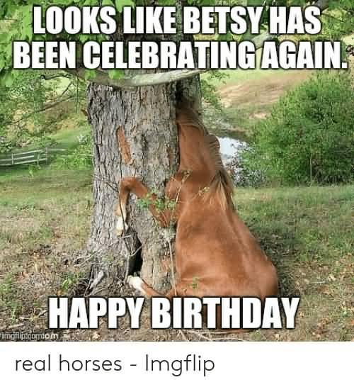 Looks Like Betsy Happy Birthday Horse Meme