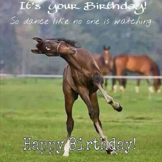 So Dance Like Happy Birthday Horse Meme