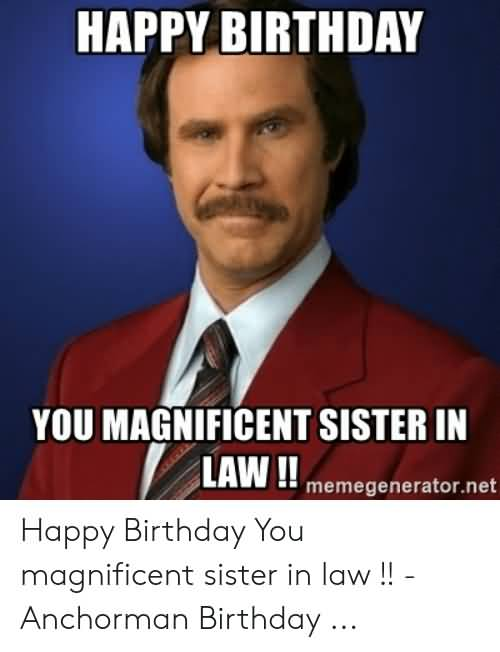 You Magnificent Sister Happy Birthday Sister In Law Meme