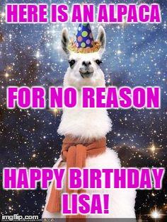 Alpaca For No Reason Happy Birthday Lisa Meme