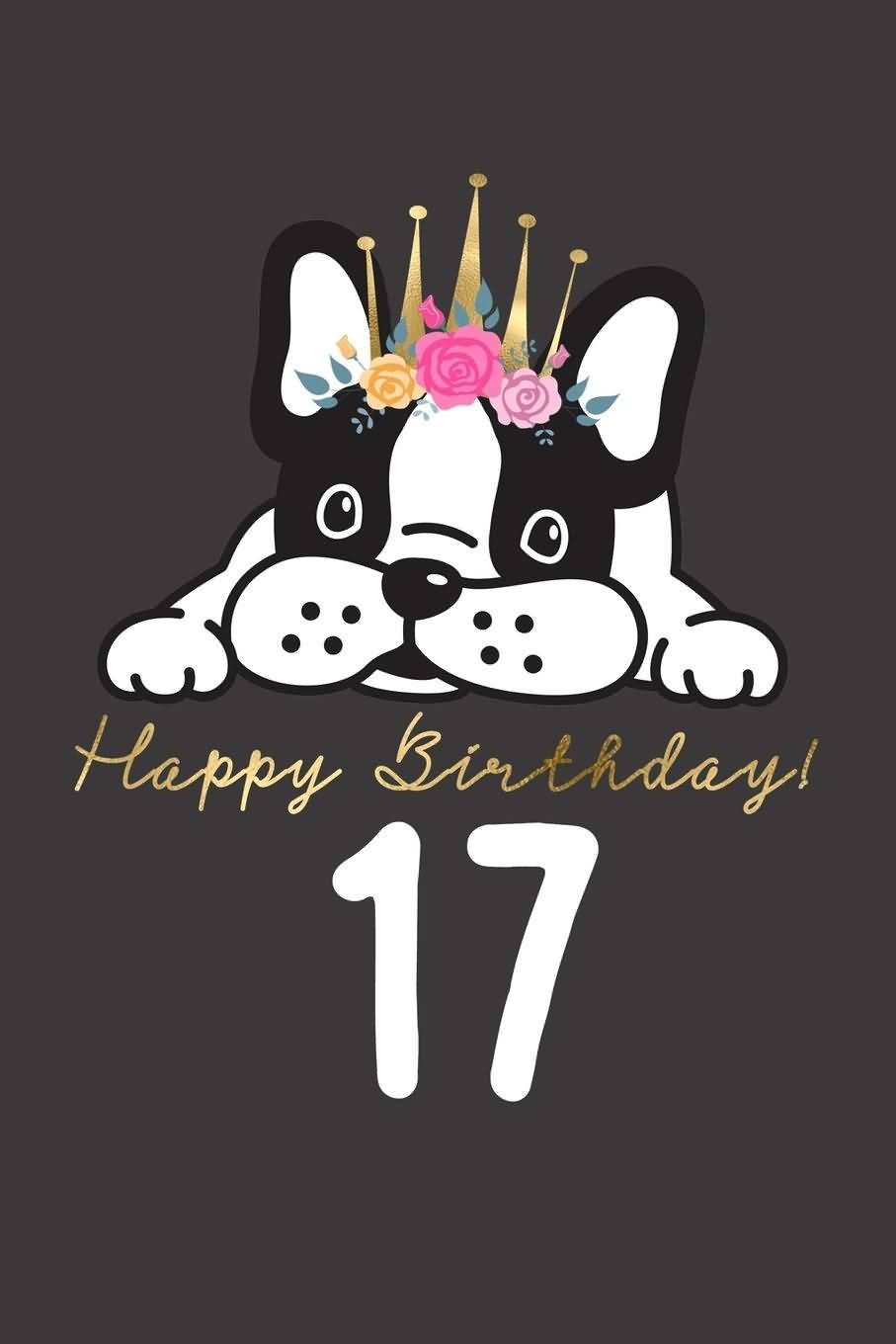 Attractive Happy 17th Birthday Wishes Idea For Facebook