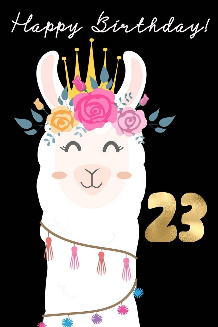 Best Happy 23rd Birthday Picture For Facebook