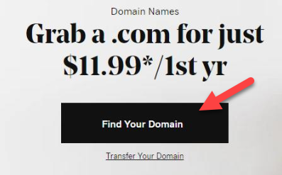 Buying a Domain Name on Godaddy.com